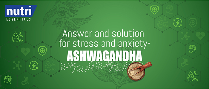 Nutri Essential's Answer and Solution for Stress and Anxiety